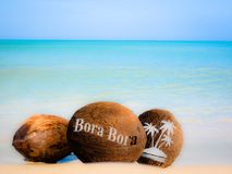 Coconuts in the sand. Coconuts with an engraving in the sand Royalty Free Stock Photos
