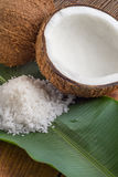 Coconuts with sea salt Stock Photography