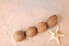 Coconuts with starfish. On the beach sand Royalty Free Stock Photos