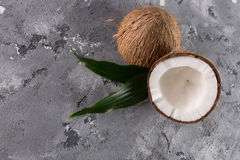 Coconuts on a stone background Royalty Free Stock Photography