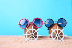 Coconuts. With sunglasses and ship wheels on beach sand Stock Image