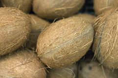Coconuts in a supermarket Royalty Free Stock Photos