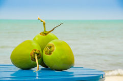 Coconuts on a table by the beach in livingston Stock Photos