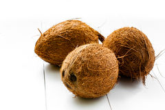 Coconuts. Three whole not split coconuts, on a wooden white plank background. Some coconuts in the group Stock Photos