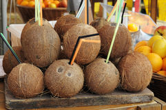 Coconuts on a tray Stock Photography