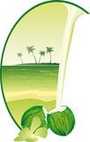 Coconuts and tropical beach Stock Photography