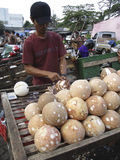 Coconuts. Vendors selling coconuts on a market in the city of Solo, Central Java, Indonesia Stock Photos