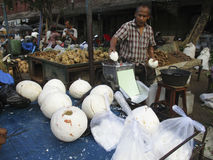 Coconuts. Vendors selling coconuts on a market in the city of Solo, Central Java, Indonesia Stock Image