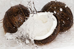 Coconuts and water splash Stock Photo