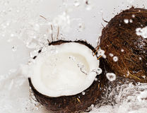 Coconuts and water splash Royalty Free Stock Images