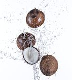 Coconuts with water splash Stock Image