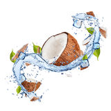 Coconuts in water splash on white background. Pieces of coconuts in water splash and ice cubes, isolated on white background Stock Photography