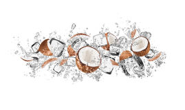 Coconuts in water splash on white background. Pieces of coconuts in water splash and ice cubes, isolated on white background Stock Image