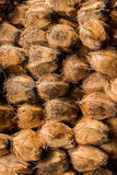 Coconuts which taking out coconut cover. Royalty Free Stock Photography