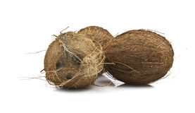 Coconuts on a white background. Three Coconuts on a white background Royalty Free Stock Images