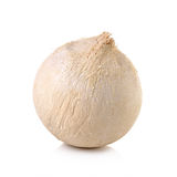 Coconuts on a white background. Coconuts on a white background Stock Photo