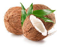 Coconuts  on a white background.  Stock Photo