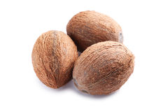 Coconuts. On a white background Royalty Free Stock Photos