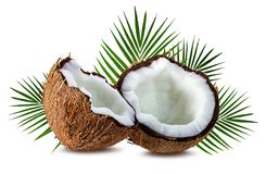 Coconuts  on white Stock Photo