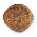 Coconuts on white background Royalty Free Stock Photography