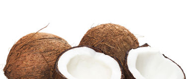 Coconuts on white background Stock Photography