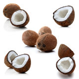 Coconuts on white background - studio shot Royalty Free Stock Image