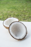 Coconuts on the white isolated over blurred grass background Royalty Free Stock Image