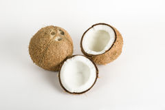Coconuts on white Royalty Free Stock Image