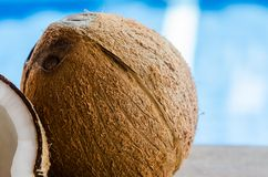 Coconuts. Whole and broken coconut on the table Royalty Free Stock Photos