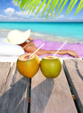 Coconuts woman sun tanning topical beach Royalty Free Stock Image