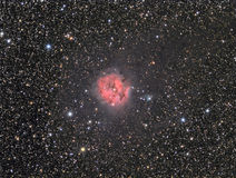 The Cocoon Nebula Royalty Free Stock Photo
