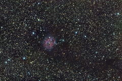 Cocoon nebula Royalty Free Stock Photo