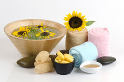 Cocoons and honey soap. Stock Photos