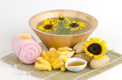 Cocoons and honey soap. Stock Image