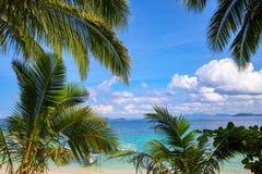 Cocopalmblad en turkoois blauw zeewaterlandschap Tropisch groen en de witte mening van het zandstrand Exotische overzeese vakanti royalty-vrije stock foto's