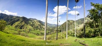 Cocora-Tal mit riesigen Wachspalmen nahe Salento, Kolumbien Stockbilder