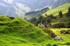 View of Cocora Valley in Salento, Colombia. The Cocora valley - Valle de Cocora in spanish - is a valley in the department of Quindío in the country of stock photography