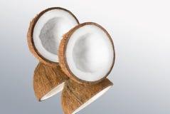 Cocos foto de stock royalty free