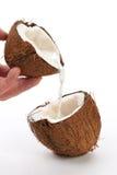 cocos Royaltyfria Foton