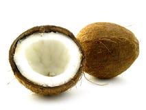 cocos Zdjęcie Stock