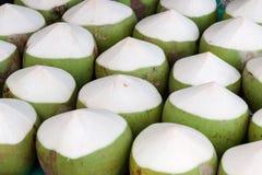 Cocos Fotografía de archivo libre de regalías