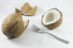 cocos royalty-vrije stock afbeelding