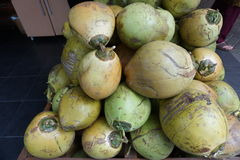 cocos Fotos de Stock