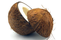 cocos Royaltyfri Bild