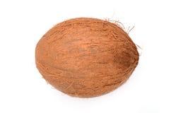 cocos Photo libre de droits