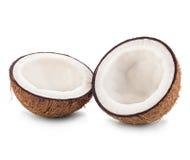 Cocos aislados en blanco Imágenes de archivo libres de regalías