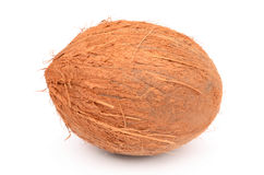 Cocos. On the background belogm Royalty Free Stock Image