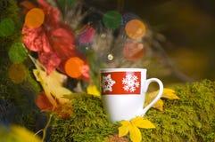 Cocos chauds avec des décorations de Noël photos libres de droits