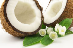 Cocos con i fiori Fotografia Stock Libera da Diritti