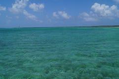 Cocos Cuba de Cayo Image stock
